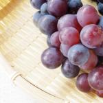 香川県でぶどう狩りを楽しもう‼ぶどう食べ放題の観光果樹園1選