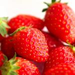 岐阜県でいちご狩りを楽しもう‼いちごの食べ放題が楽しめる観光農園5選