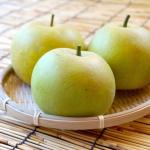 東京都で梨狩りを楽しもう‼梨や穫体験ができる観光農園4選
