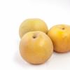 新潟県で梨狩りを楽しもう‼梨の収穫体験ができる観光農園8選