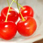 石川県でさくらんぼ狩り‼さくらんぼの食べ放題が楽しめる果樹園1選