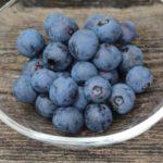 佐賀県ブルーベリー狩り‼ブルーベリーの食べ放題が楽しめる果樹園2選