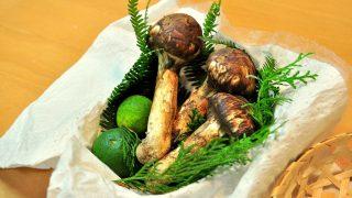 京都で松茸狩り! 松茸狩りの後は美味しい松茸料理。^^。