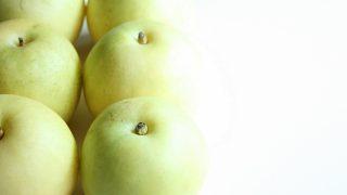 京都府で梨狩り‼梨の食べ放題や収穫体験ができる観光農園4選