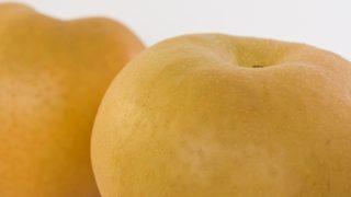 愛媛県で梨狩り‼梨の収穫体験や食べ放題が楽しめる観光農園4選