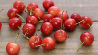 広島県でさくらんぼ狩り‼さくらんぼの食べ放題が楽しめる果樹園2選