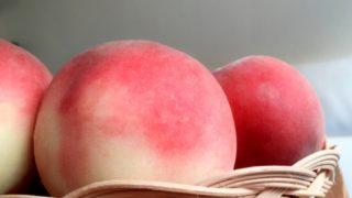 静岡県で桃狩り‼桃の収穫体験が楽しめる果樹園1選