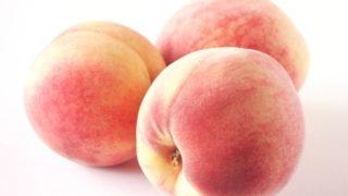 福岡県で桃狩り‼桃の収穫体験が楽しめる果樹園1選