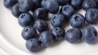 栃木県でブルーベリー狩り‼ブルーベリーの食べ放題や収穫体験が楽しめる果樹園16選