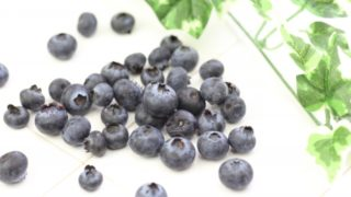 福島県でブルーベリー狩り‼ブルーベリーの食べ放題や収穫体験が楽しめる果樹園19選