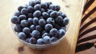 秋田県でブルーベリー狩り‼ブルーベリーの収穫体験や食べ放題が楽しめる果樹園9選