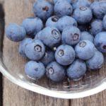 福井県でブルーベリー狩り‼ブルーベリーの食べ放題や収穫体験が楽しめる果樹園2選
