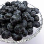 神奈川県でブルーベリー狩り‼ブルーベリーの食べ放題や収穫体験が楽しめる果樹園26選
