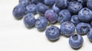 高知県ブルーベリー狩り‼ブルーベリーの食べ放題や収穫体験が楽しめる果樹園4選