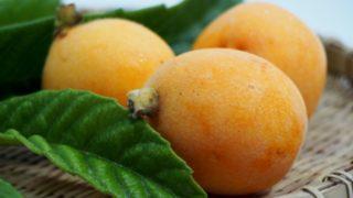 びわには、たくさんの驚くべき効能が 果物の概念が変わりますよ